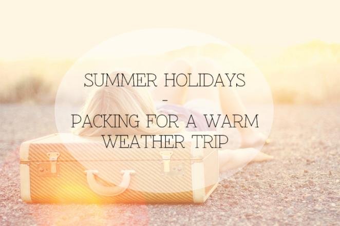 trip suitcase valise voyage summer