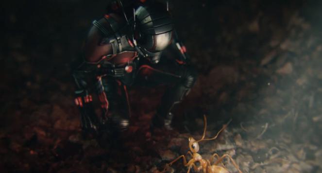 Ant Man - © DR